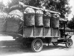 profile sjaya-truck chevrolet tahun 1932.tanah karo